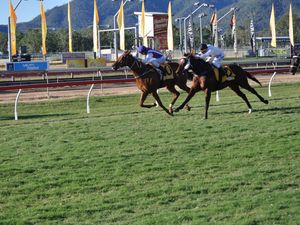 Gloss taken off win for Bundy trainer in the Rockhampton Cup