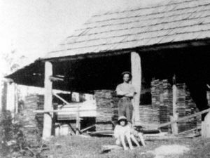 Coast history: Timber godsend for pioneers