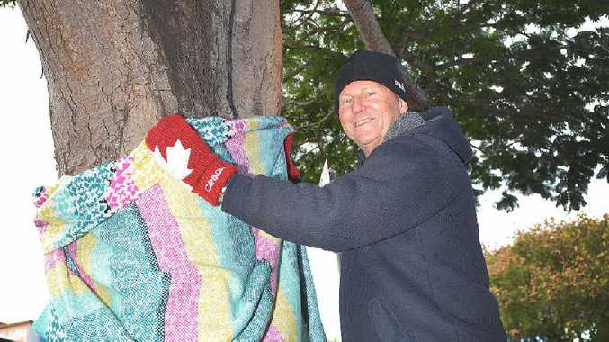 TREE TIME: Mary St business owner, Tony Goodman, gets ready to start decorating trees in Mary St ahead of next month's Winter Trees on Mary event.