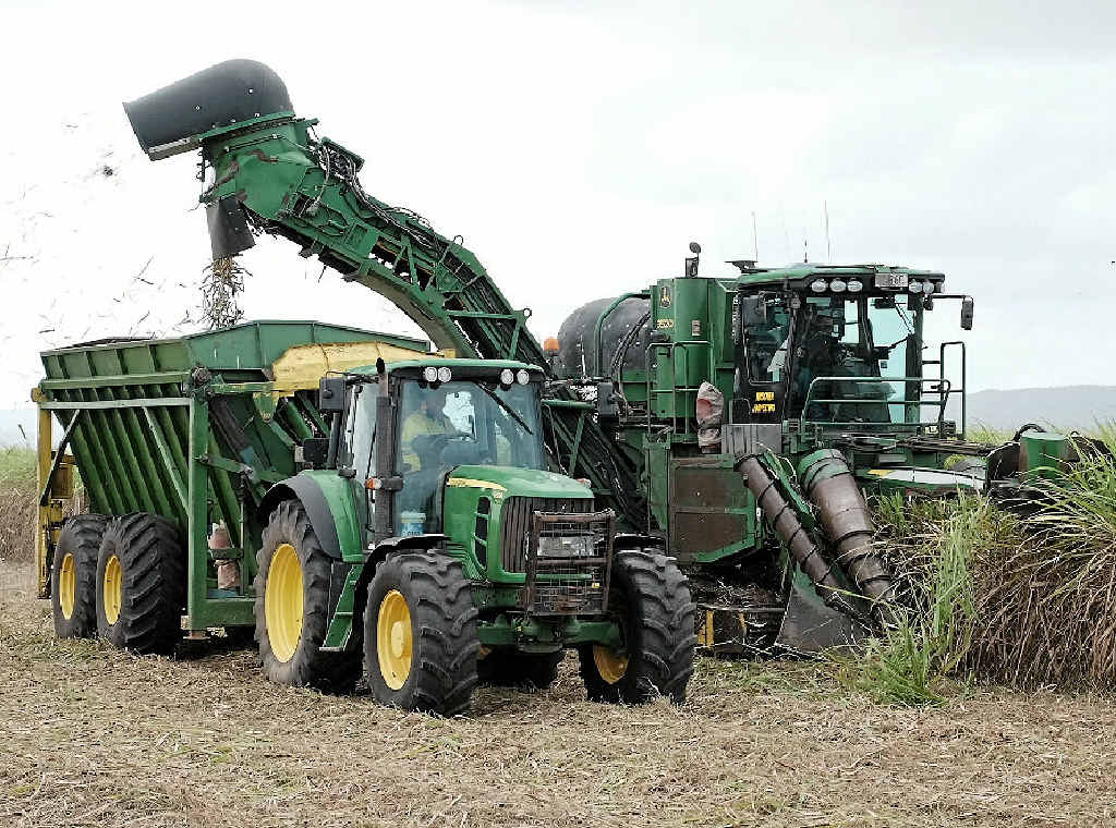 UNDER WAY: Hinschen Harvesting cutting their first cane for the season on Phillip Taylor's Lethebrook farm.