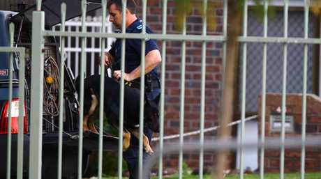 The police dog squad chase a man at Wilsonton Heights.