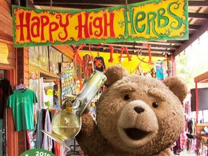 Ted makes Nimbin (even more) famous