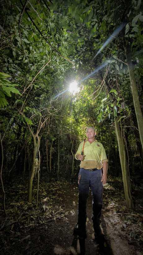 ISLAND ASSETS: Field officer Wayne Stevens walks through the rainforest reserve on Susan Island.