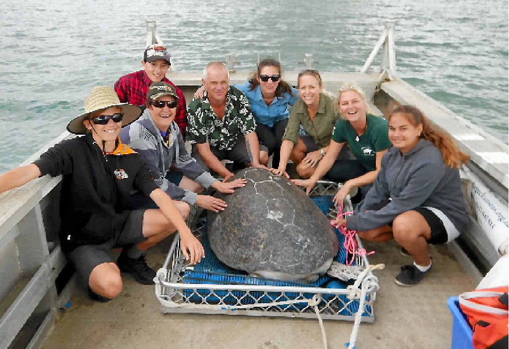 HAPPY TURTLE: Zac Maynard, Cathy Clegg, Ethan Clegg, Alf Vary, Stefanie Wabnik, Olivia Brodhurst, Libby Edge and Hope Byers at Ella's release over the weekend.