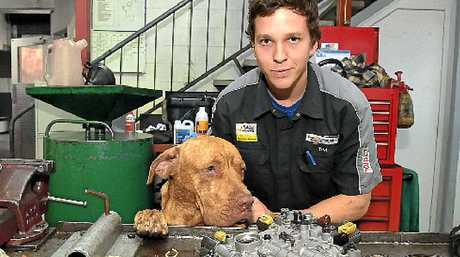 REVVED UP: Mechanic Tim Olah takes his dog Frank to work at Ron Hill Automatics.