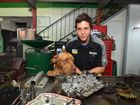 Bring your dog to work day. Mechanic Tim Olah takes his dog Frank to work at Ron Hill Automatics. Photo: Warren Lynam / Sunshine Coast Daily