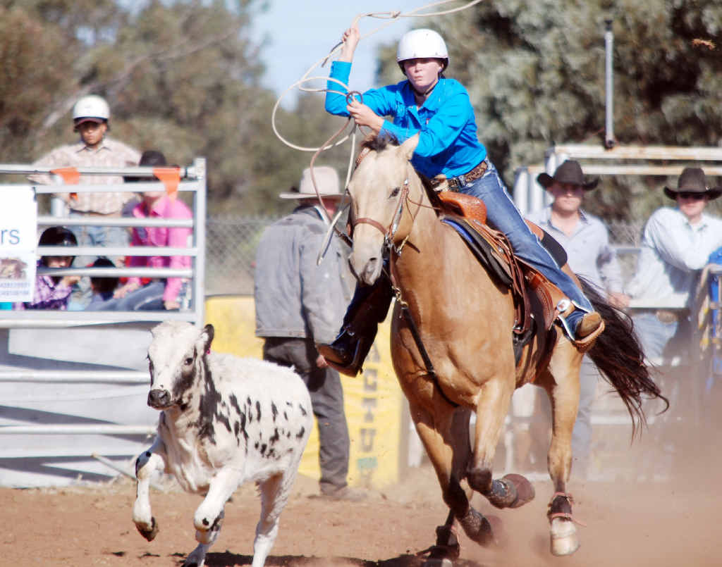ROPING THE STEER: A competitor at the Blackwater Rodeo lassoes away.