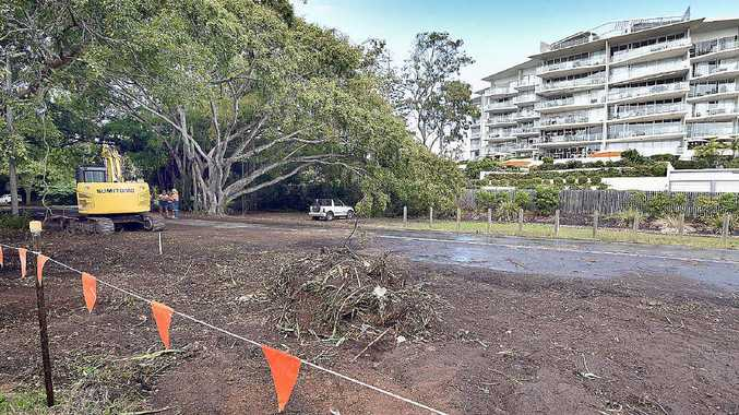 """OOPS: A tree may have been """"mistakenly removed"""" during road works at Pialba."""