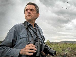 Battle heats up to save Sunshine Coast wetlands