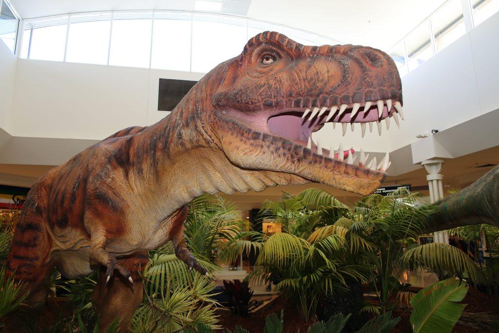 Dinosaur experience at Kawana Shopping World is on until Sunday.