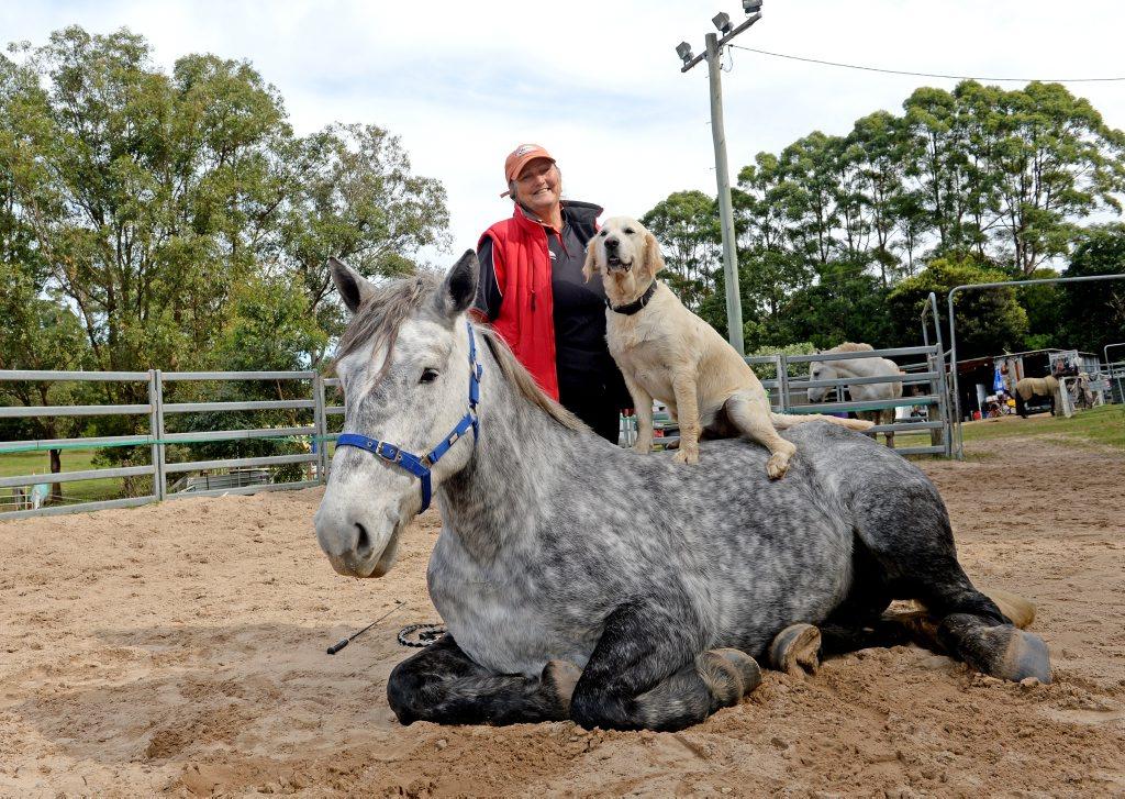 Karen Foran with Kamilaroi the horse and Breeze the dog. Photo: Blainey Woodham / Tweed Daily News
