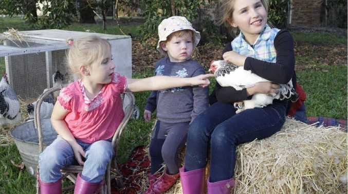 CUDDLY PETS: Tori Genrich, Georgie Morris and Taneisha Genrich are looking forward to seeing the chickens and ducks at the Farm Fantastic Expo.