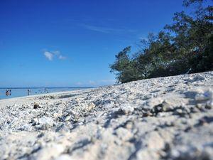 Quirky island is a gem, poop or no poop