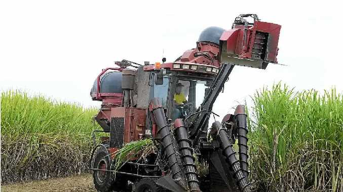 THE CRUSH: Cane harvesters need to be careful when working near powerlines.