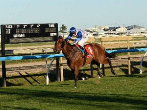 Ooralea horse races