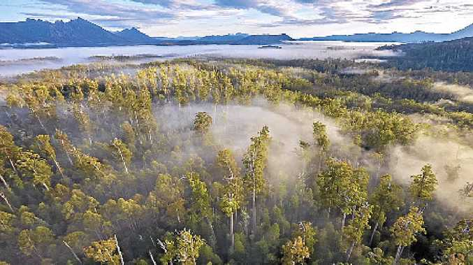 DIVISION: Mining and logging have been proposed for areas of Tasmania's World Heritage listed forests.