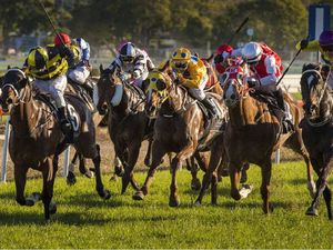Kurtley takes South Grafton Cup as Darci Magic disappoints