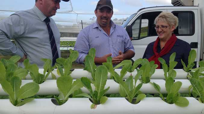 Minister Barnaby Joyce with Federal Member for Capricornia Michelle Landry MP and hydroponic lettuce grower Daryl Wilson from Emu Park.