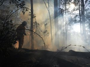 Crews remain on scene of large bushfire at Bucca