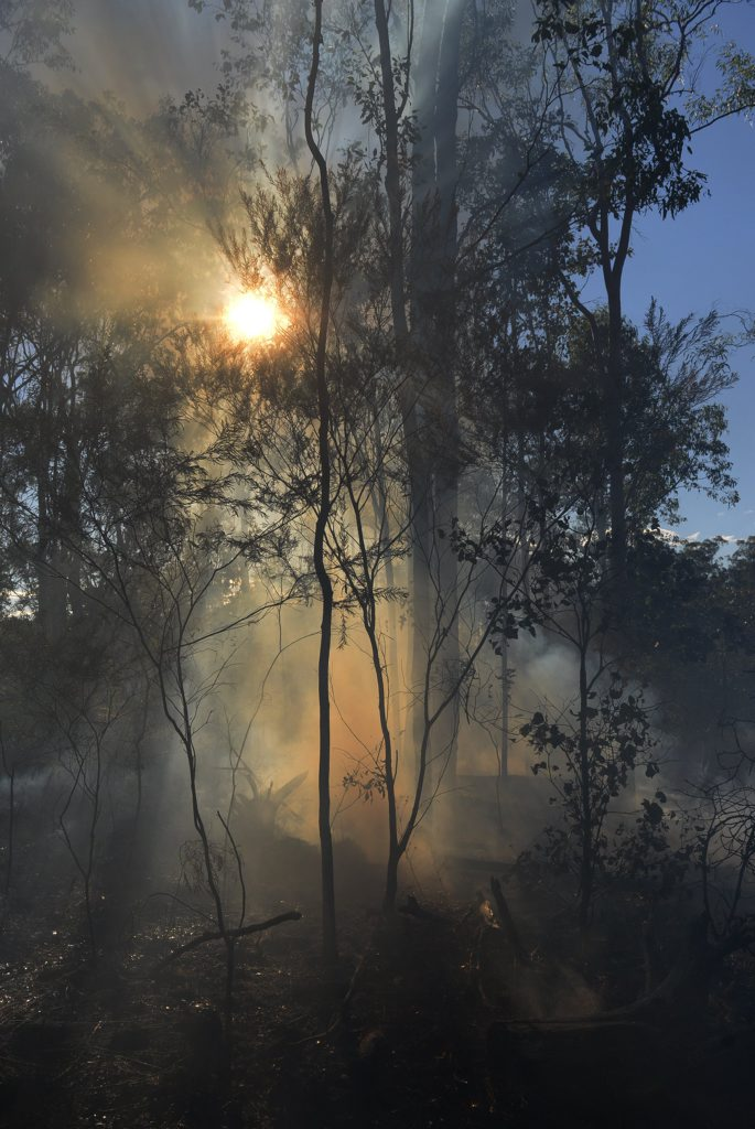 A father of two who has previously been jailed for arson is set to be locked up again after for lighting vegetation during the last horror fire season.