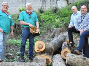 Pest trees recycled for Nambour hospital's wellness garden