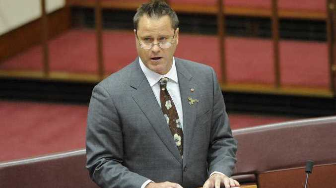Greens trade spokesperson Peter Whish-Wilson