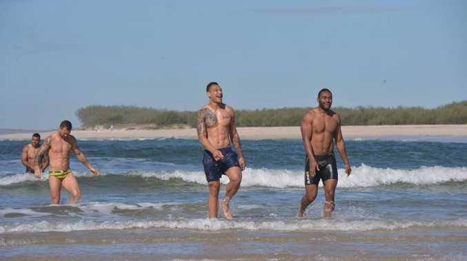 Wallabies swim at Caloundra. For On line. Photo: John McCutcheon / Sunshine Coast Daily