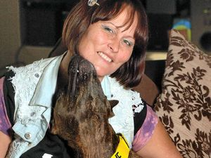 Carer's plea: give staffies a second chance and adopt