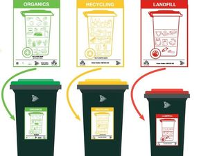 New organics bins rolling out across the Byron Shire