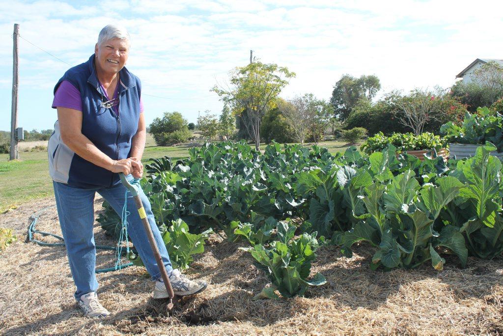 Yvonne Wolski and her beloved vegie garden. Photo Hayden Smith / Chinchilla News