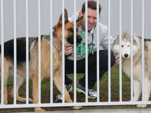 Don't let dogs' noses poke out of fence, council demands