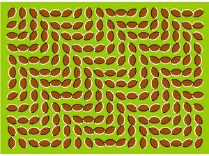 Optical illusions explained