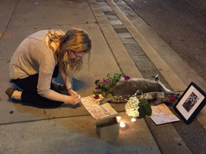 Toronto holds candlelit vigil for dead raccoon