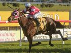 Nautile steers clear to win Maclean Cup