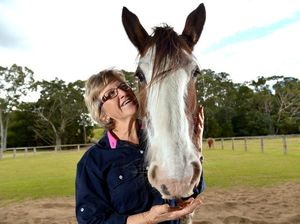 Using 'horse power' for healing