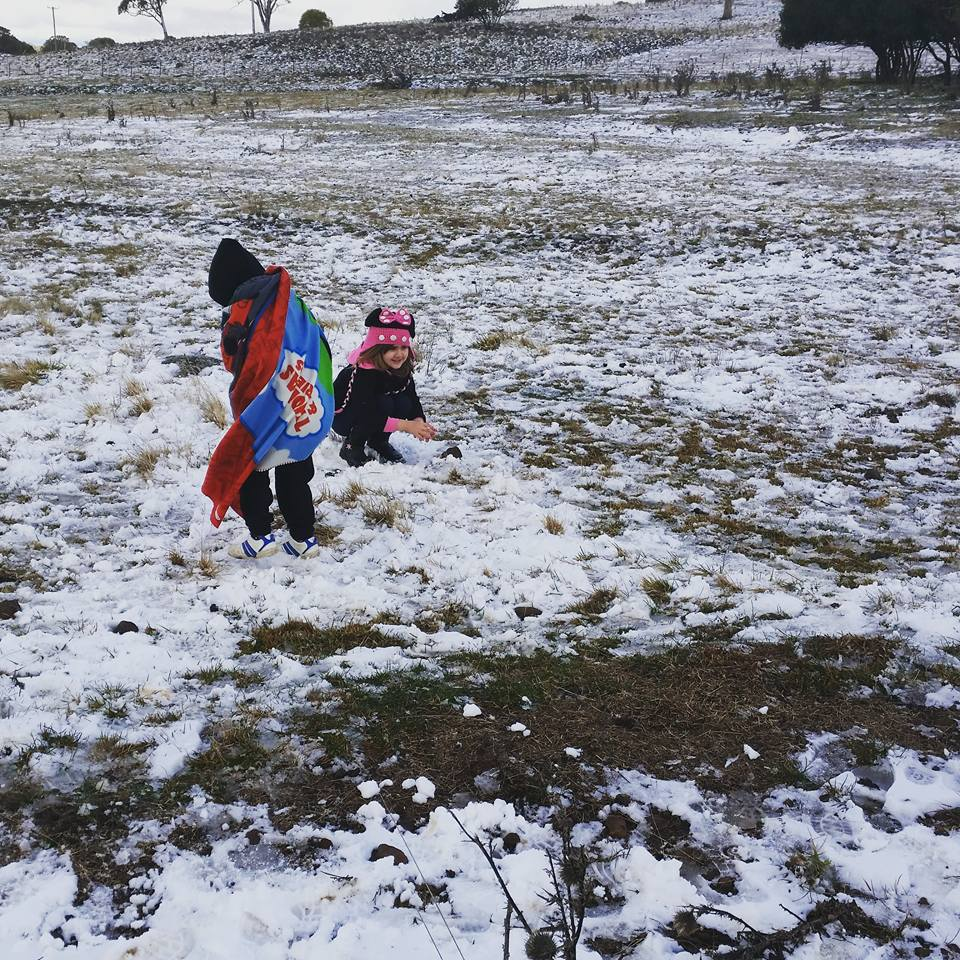 Images shared by Northern Rivers residents of snow around Tenterfield, Guyra, and Ben Lomond, Sunday, July 12.