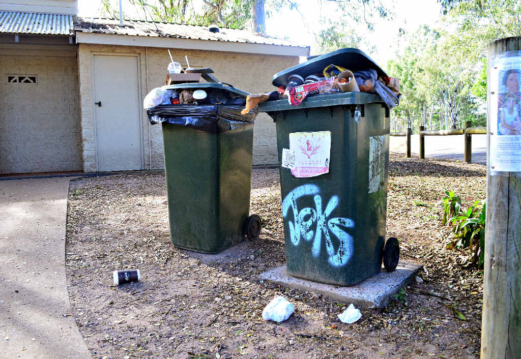 TRASH TALK: The bins at Apple Tree Creek rest stop are overflowing with trash, despite twice-weekly collections.