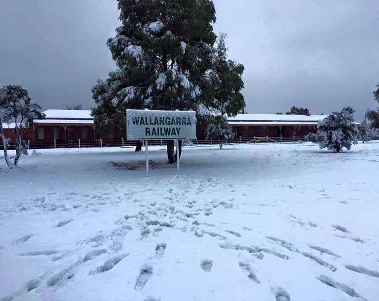 Amanda Goodall - My mother just told me it just snowed again Wallangarra