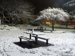Snow falls in Stanthorpe, Queensland