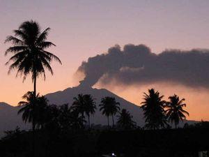 Sunshine Beach family: 'Please don't blame Bali'