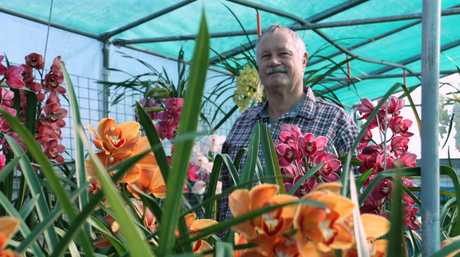 Head to St Paul's Lutheran Church Hall on Saturday for the Autumn Orchid Show.