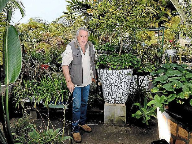 EARTH MAN: Trevor Murray, of Trev's Garden in Ballina. The council will fine him over $1 million if he doesn't comply with council demands.