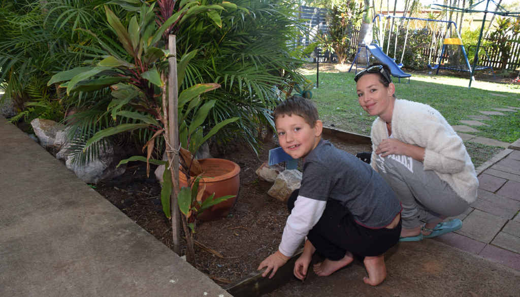 Boe Summers, 7, inherited his mother Skye McMullen's green thumb and loves helping with the weeding.