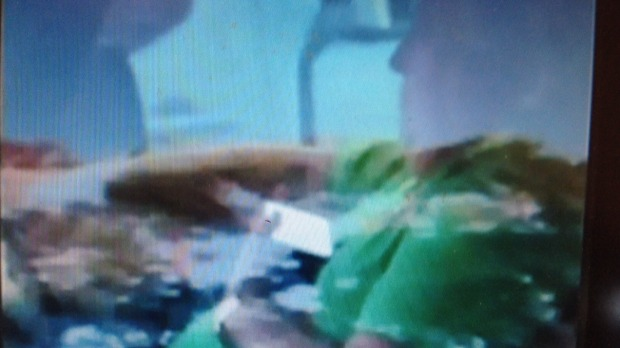 Channel 7 footage shows Clive Palmer driving while holding a mobile device. Photo: Supplied