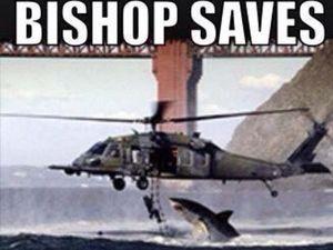 Mick Fanning Shark Attack Memes