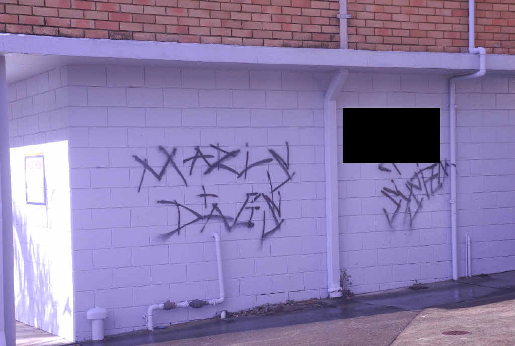 TELSTRA: 'Marls and Dags' and 'F*** the System.'