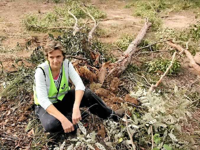 DEVASTATED: Wildlife rescuer Natalie Richardson wants the Fraser Coast Regional Council to put restrictions on private property owners to prevent further clearing.