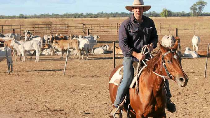 MOVING FORWARD: Matthew Canavan says a new agreement relating to trade between China and Australia is fantastic news for Central Queensland producers.