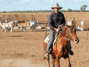 China cattle deal a 'game changer' for Aussie beef