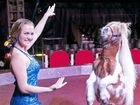 Webers Circus opens today in Queens Park
